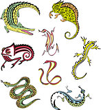 miscellaneous reptiles
