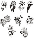 stylized black and white flowers