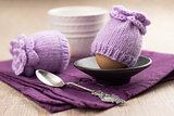 lilac egg warmers