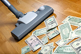 Vacuum cleaner sucks on U.S. dollars