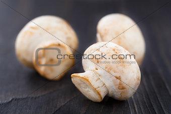 Fresh champignons