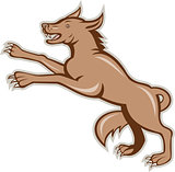 Wolf Wild Dog on Hind Legs Cartoon
