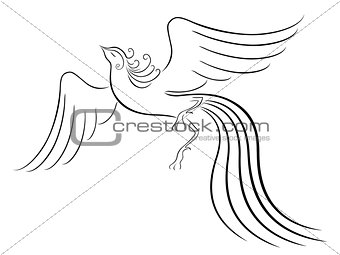 Black graceful Firebird contour