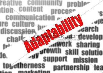 Adaptability word cloud