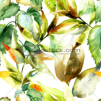 Watercolor illustration of green leaves