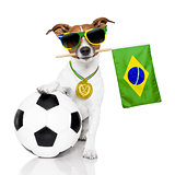 dog as soccer with medal and  flag