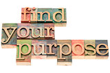 find your purpose in wood type