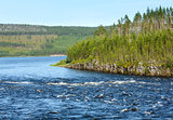 Summer river (Sweden)
