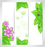 Set of bio concept design eco friendly banners