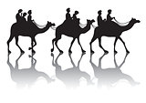 Camel's caravan