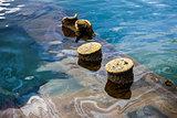 U.S.S. Arizona Under Water, Pearl harbor.