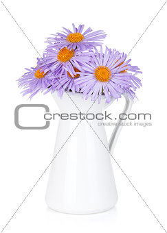 Blue camomile flowers in jug