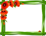 Floral frame with red poppies and ladybirds.