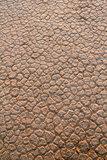 Wadi Rum Desert dry soil detail.
