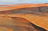 Patterns in the sand of the Namib