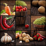 Organic vegetables collage