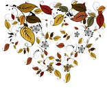 Autumn floral leaves background