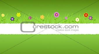 Torn paper middle green spring landscape