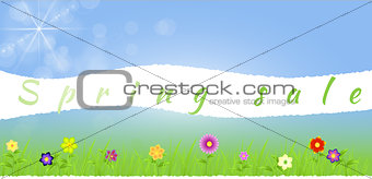 Torn paper middle spring landscape with flowers,grass,raindrops