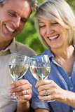 Cheerful couple toasting wine glasses