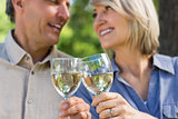 Romantic couple toasting wine glasses