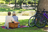 Couple with picnic basket in park
