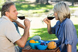 Couple drinking red wine in park