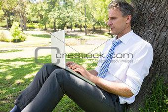 Mature businessman using laptop in park