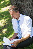 Businessman reviewing documents in park