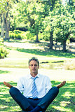 Businessman meditating on grass