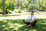 Smiling businessman using laptop at park