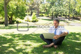Smiling businessman using laptop at park