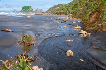 Small Stream Flowing Into the Sea