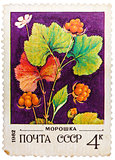 Post stamp printed in USSR (CCCP, soviet union) shows image of b