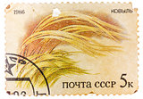 Post stamp printed in USSR (CCCP, soviet union) shows image of G