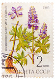 Post stamp printed in USSR (CCCP, soviet union) shows plant of D