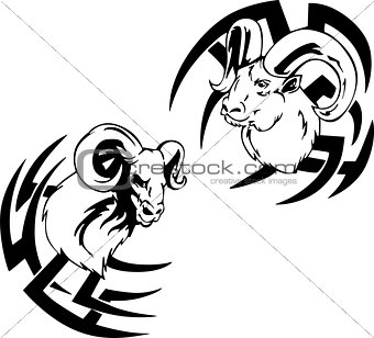 Argali head tattoos