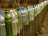 garden fence with plastic bottles