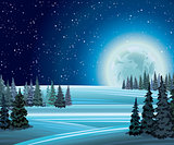 Winter nature with full moon.