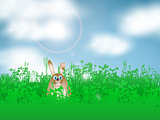 Easter bunny in grass