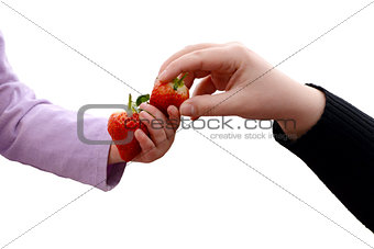 Toddler and adult sharing two fresh strawberries