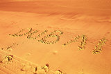 Dubai written on sand on beach