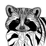 Racoon or coon head vector animal illustration