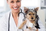 Smiling female vet holding cute puppy