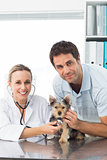 Veterinarian examining puppy with man