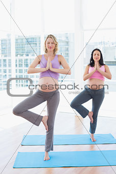 Relaxed pregnant women in yoga class in tree pose