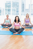 Meditating pregnant women in yoga class sitting in lotus position