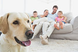Happy family sitting on couch with their pet labrador in foreground