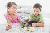 Siblings lying on rug with their yorkshire terrier puppy