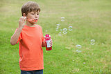 Boy blowing soap bubbles at park